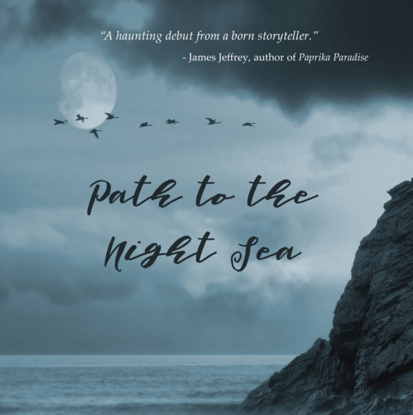 Path to Night Sea by Alicia Gilmore, a Regal House Publishing title